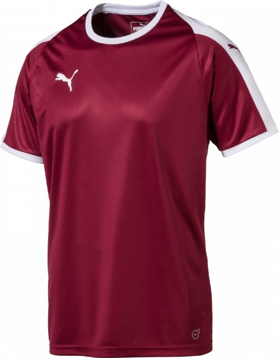 PUMA Liga Training Jersey: : Sports et Loisirs