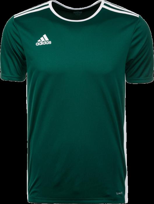 90cd3764999 Adidas Entrada 18 game jersey › Green & white (CD8358) › 10 Colors ...