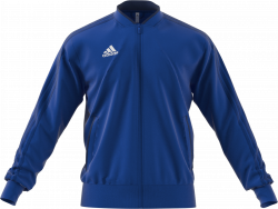 d03998e56 Adidas Assita 17 Goalkeeper Jersey › Cobolt blue   navy blue (AZ5399) › 4  Colors › Shirts by Adidas